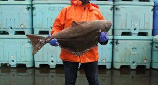 Alaska Seafood 101 10