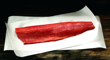 Keta Salmon 2