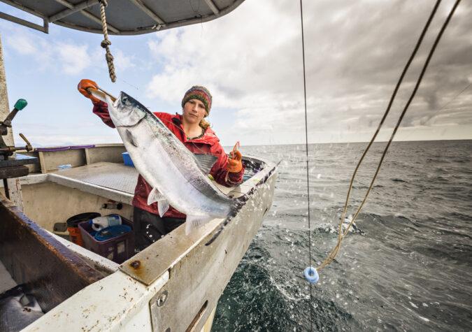 https://www.alaskaseafood.org/wp-content/uploads/201401-Salmon-Haul-in-Action-CM-Web-JPG.jpg