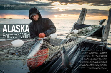 2020 Chef Issue 4 - Forever Wild