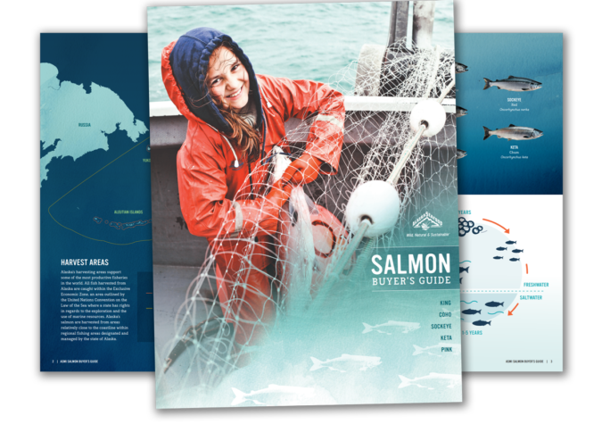 https://www.alaskaseafood.org/wp-content/uploads/Alaska-salmon-guide.png
