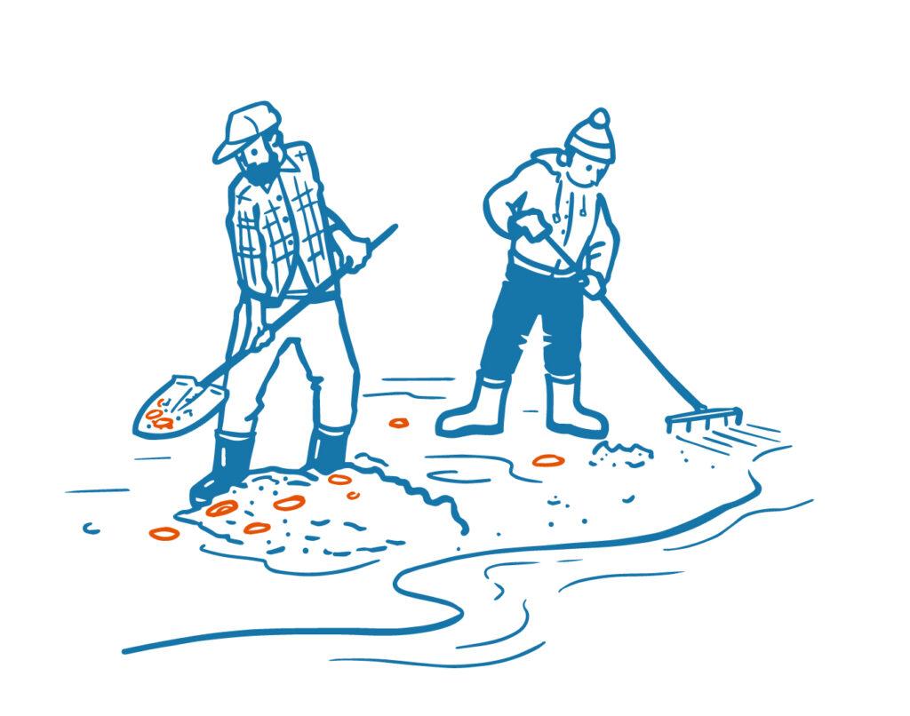 digging harvesters illustration