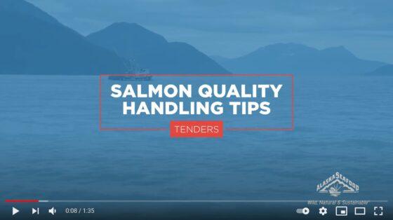 Salmon Quality Handling Tips for Tenders