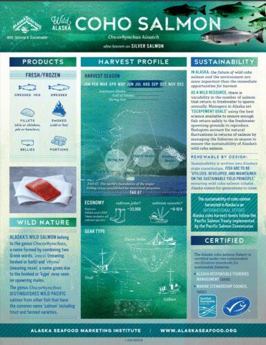 Coho Salmon Fact Sheet