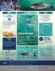 Alaska Coho Salmon Fact Sheet (China)