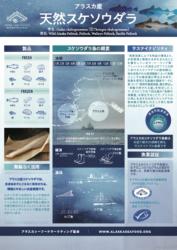 Pollock Factsheet (Japan)