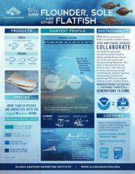 Flatfish Fact Sheet