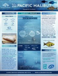 Pacific Halibut Fact Sheet