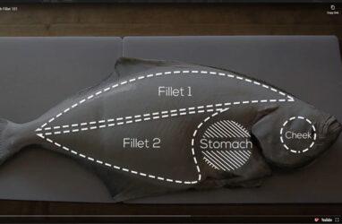 Alaska Halibut & Flatfish Fillet 101
