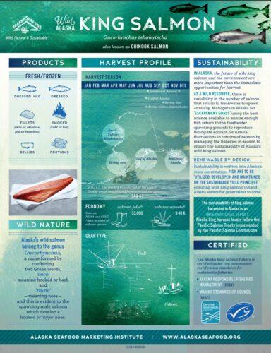 King Salmon Fact Sheet