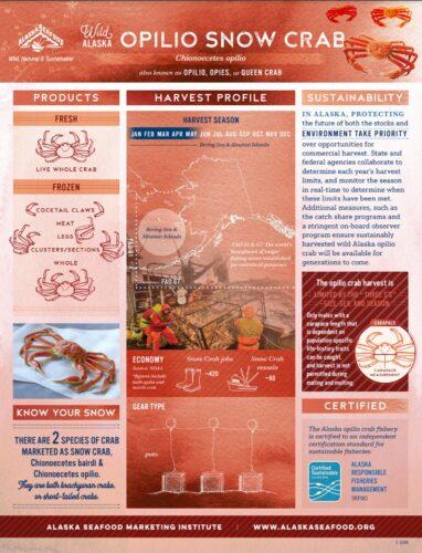 Opilio Snow Crab Fact Sheet
