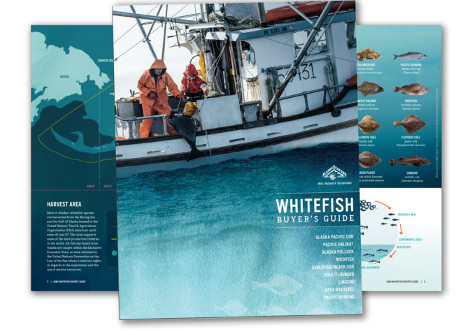 https://www.alaskaseafood.org/wp-content/uploads/whitefish-guide.png