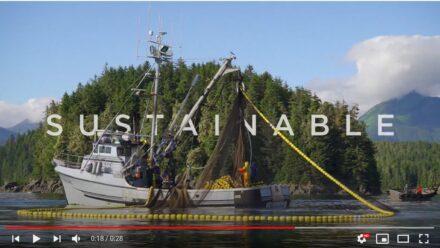 Alaska Seafood: Wild, Natural & Sustainable